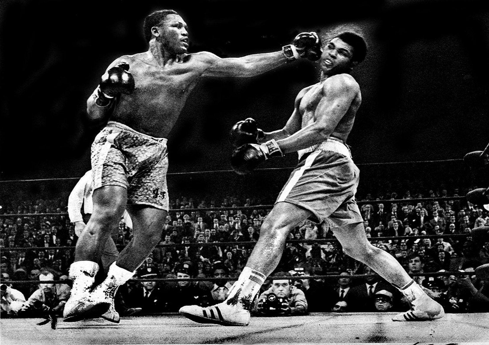 Boxing catfight rocky story 6
