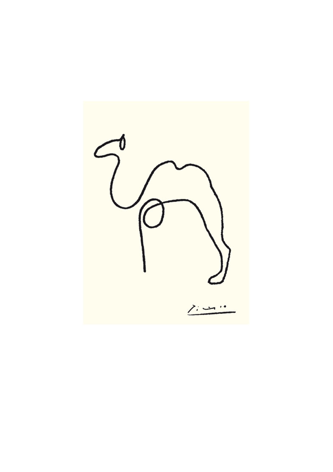 Picasso The Camel